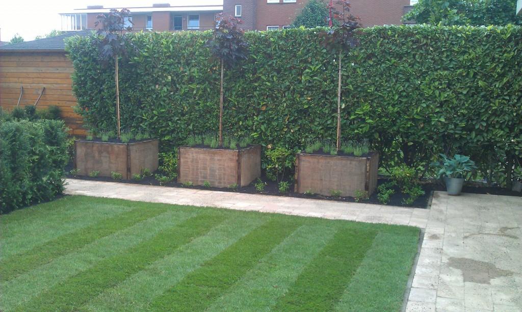 Aanleg landelijke strakke tuin mk hoveniers for Landelijke tuin aanleggen