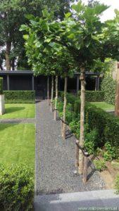 moderne_landelijke tuin_c-BorderMaker
